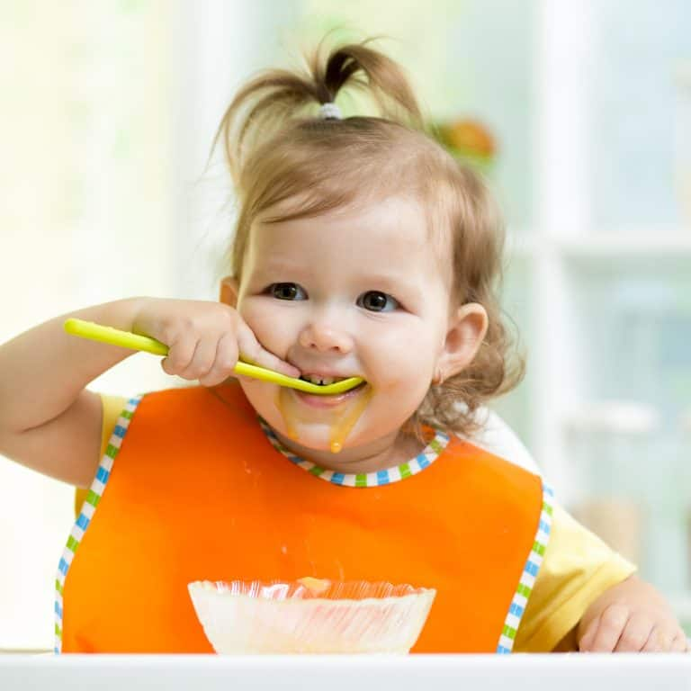 Toddler Friendly Meal Ideas