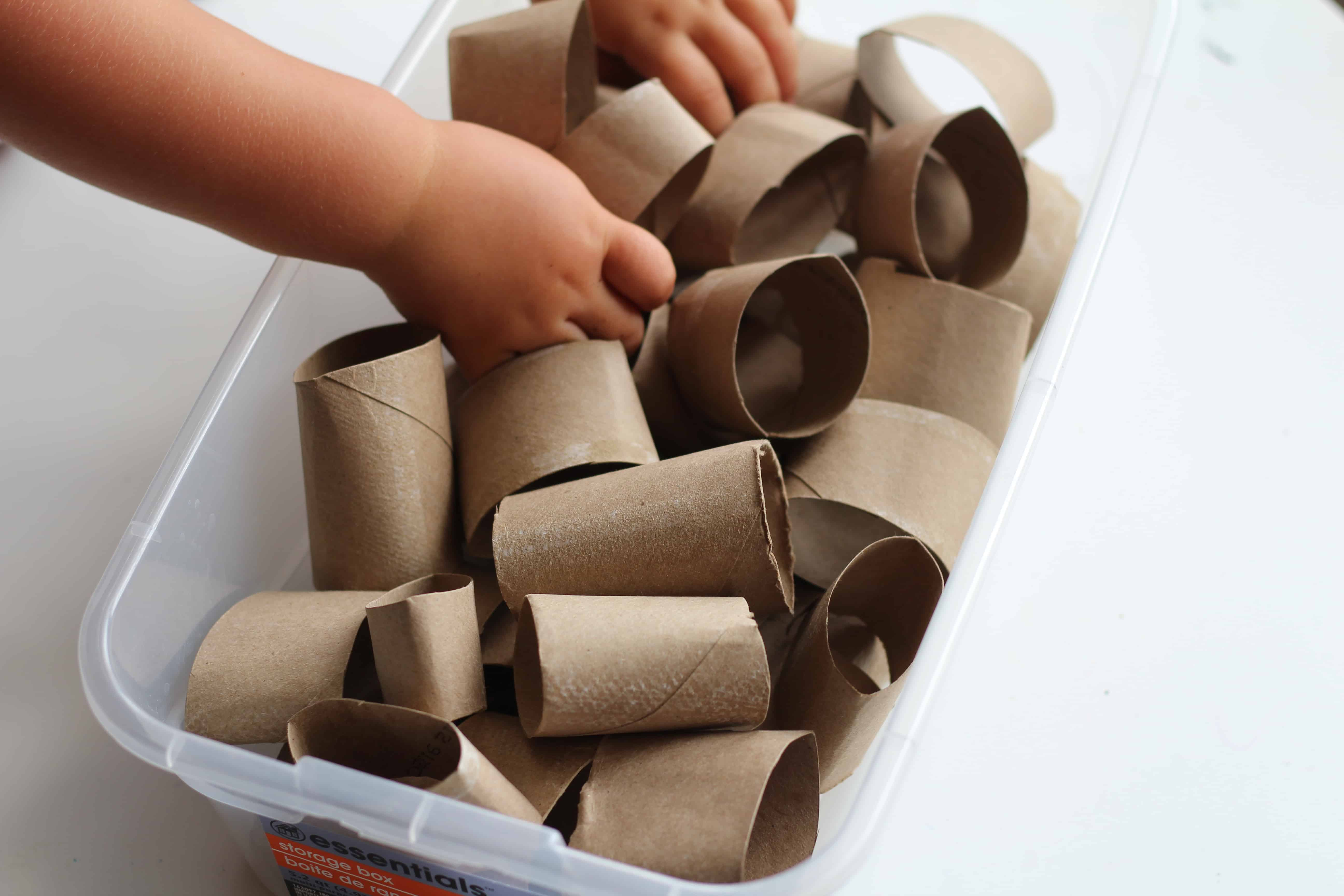 Toilet Paper Roll Crafts And Activities