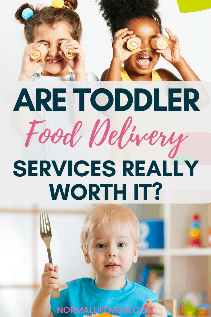 Toddler food delivery? Are toddler food delivery services really worth it? One mom tried it out and is offering her review. A quick look at toddler food delivery service Yumble #toddlerfood #toddlerfooddelivery #pickieaterstoddler #pickyeaters #toddlerhealthyfoods #toddlerfriendlydinners #toddlermeals